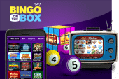 Bingo on the Box Mobile