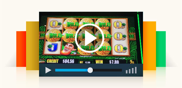 Bingo Slot Machine Cheats